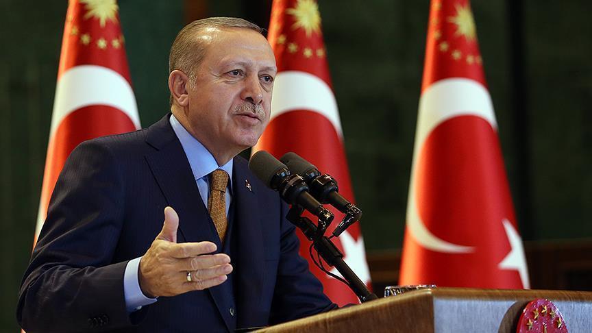 لهذا السبب طلب أردوغان دعم الناتو في عفرين