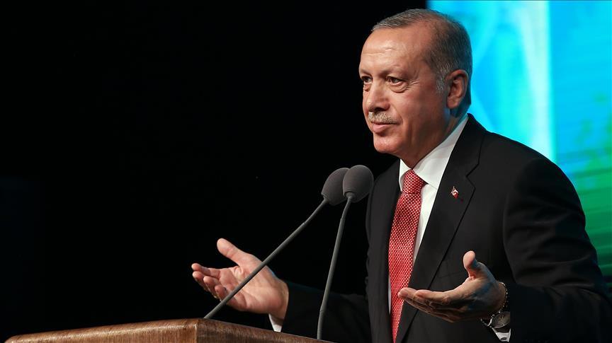 أردوغان: الشعب السوري هو من دعانا لحمايته