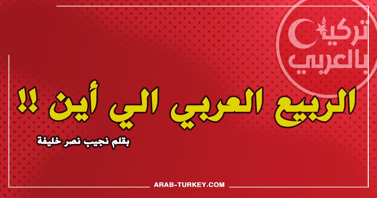 الربيع العربي الي أين … بقلم نجيب نصر خليفة