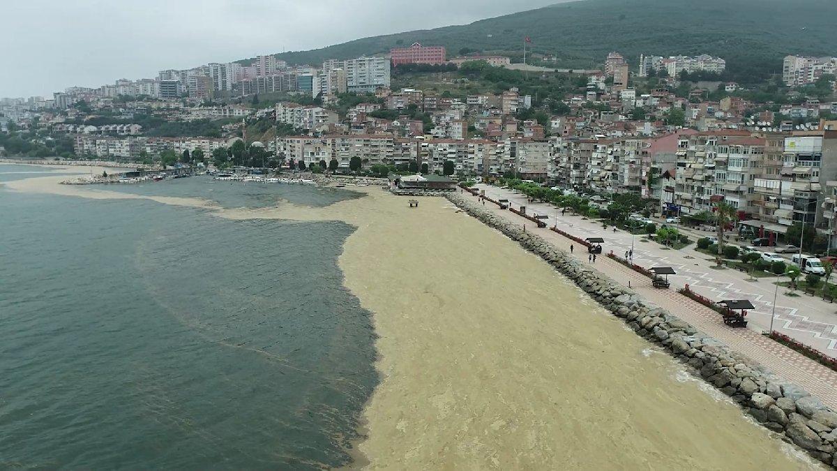 البحار تفـ.ـ قد الأوكسجين… المركز الإنمائي التركي يطلق نداء عاجل لإنقاذ البحار في تركيا
