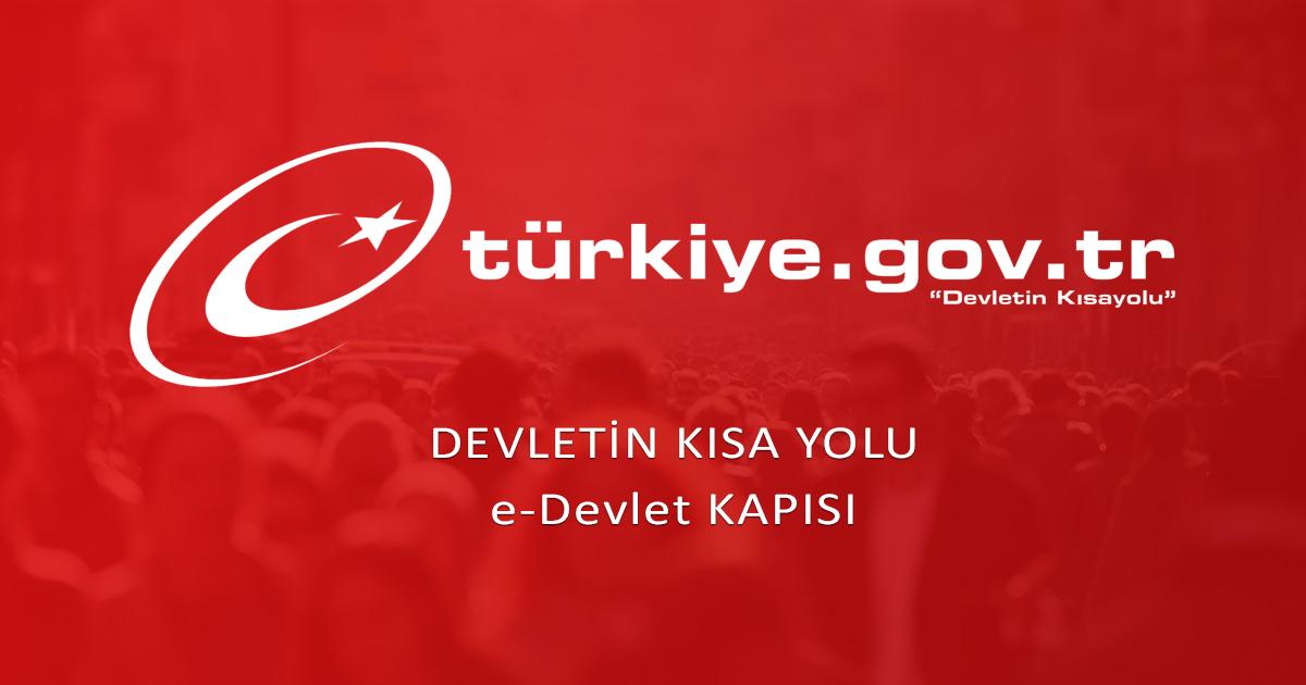 كيفية استخراج بيان عائلي للسوريين في تركيا عن طريق E-DEVLET